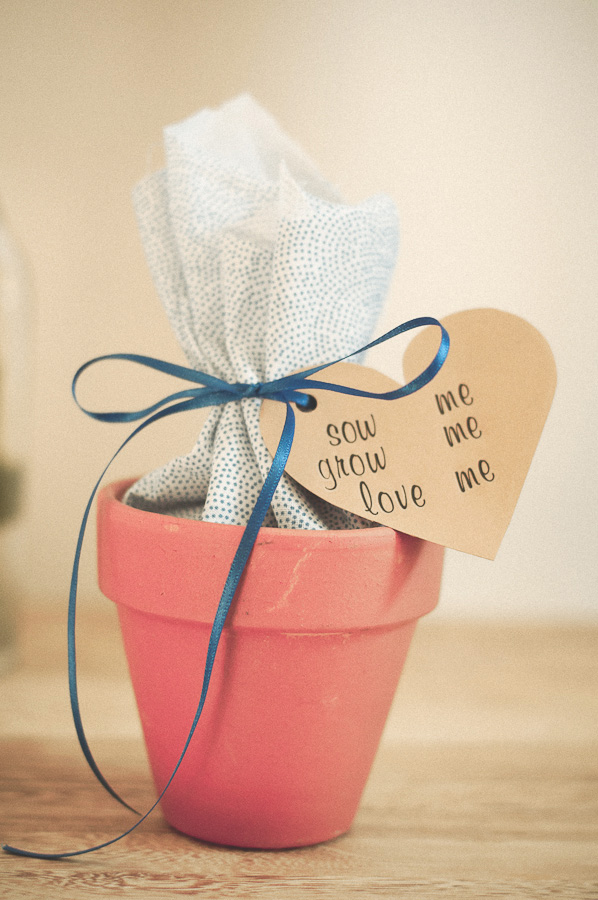 Rock My Wedding Diy Seeds For Favours