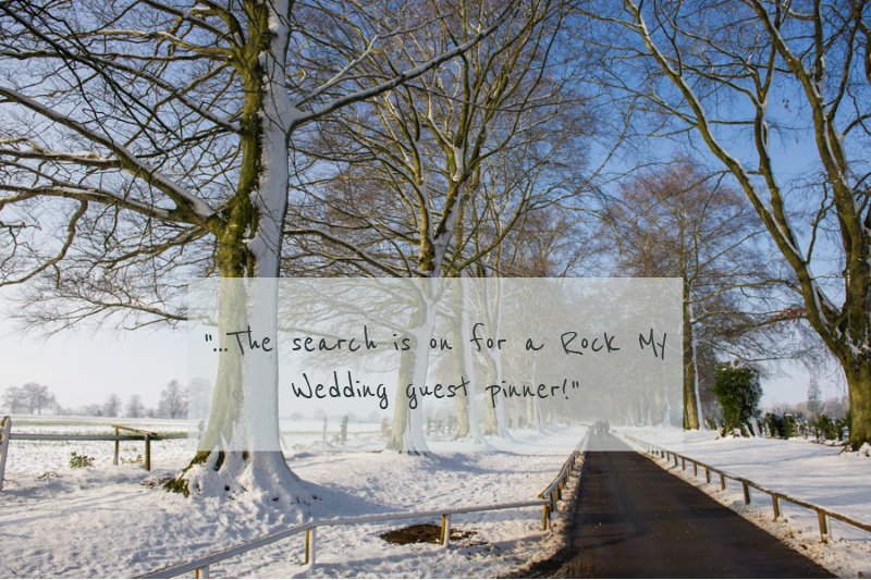 Winter wedding inspiration Show Us Your Pins!
