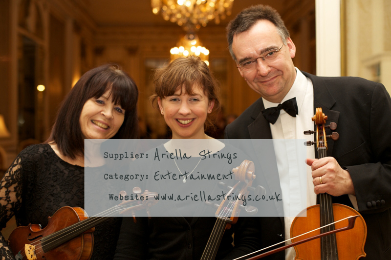Ariella-Strings-Header