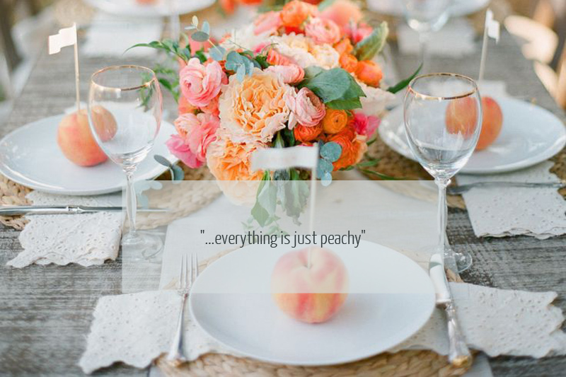 Cover Image quote Colour Story: Peaches And Cream.