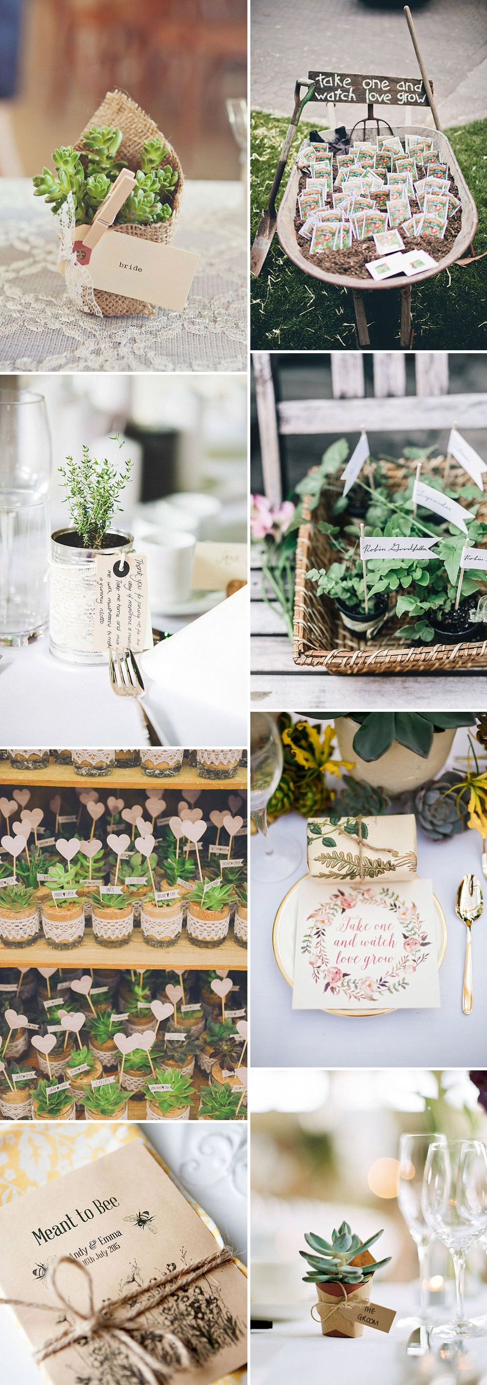 Unique and eco friendly wedding favour ideas your guests Environmentally friendly decorations