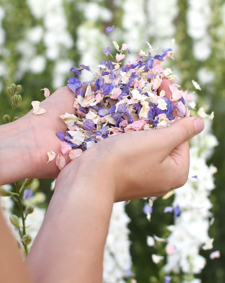 shropshire petals shropshire petals wonderland mix biodegradable petal confetti