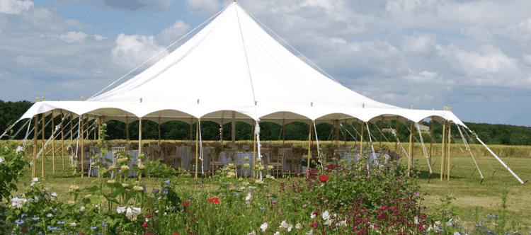 the swanky marquee company petal pole 2 no sides