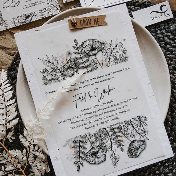 luna sol co design black botanics seeded inv